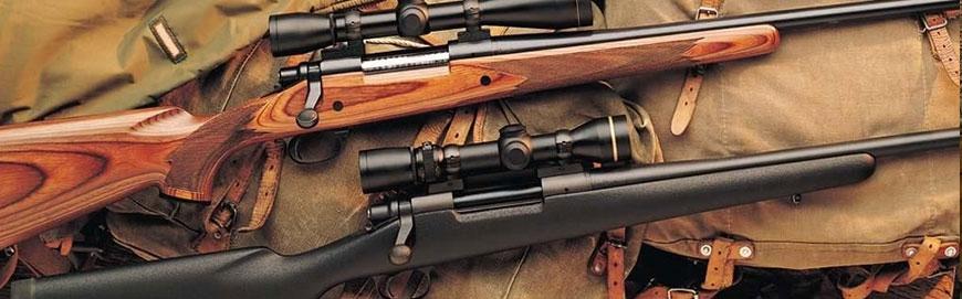 Arme de vânătoare